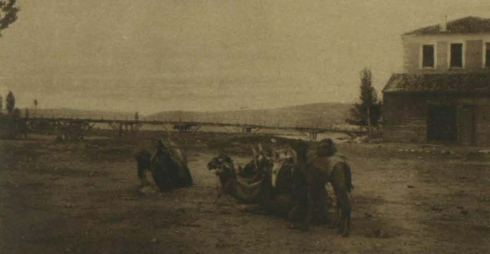 From the Turkish side: Camels resting on the Kodgo Tichai river at Chanak, opposite Kilid Bahr