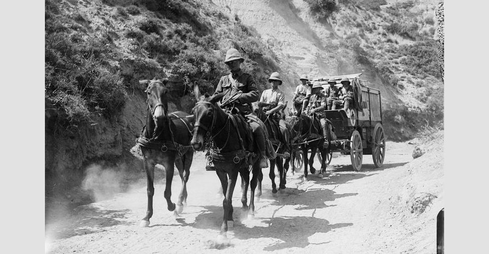 A horse drawn ambulance wagon passing through Gully Ravine, Helles Front.