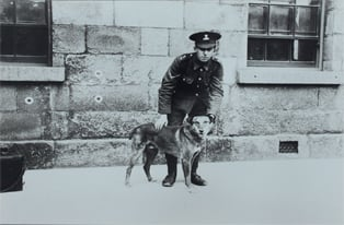 RDF soldier with their mascot at the Royal Barracks, Dublin, April 1915. (NMI)